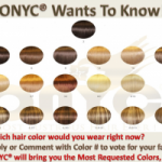 BLOG.Hair_.Chart_.Color_.Draft_.1-280x200